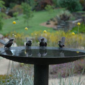 600mm-blue-wren-willy-wagtail-birdbath