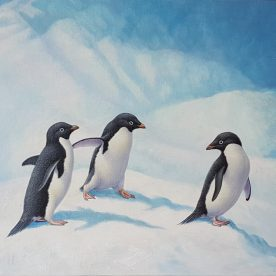 rw-adelie-penguins