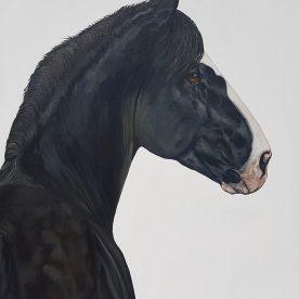 Jill Barber Richardson Iron Horse $4,950