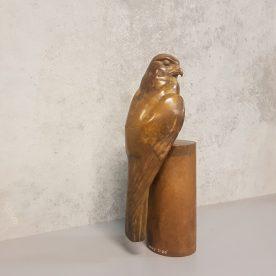 Lucy McEachern Nankeen Kestrel Bronze Edition of 25 $3,000 ORDERS TAKEN