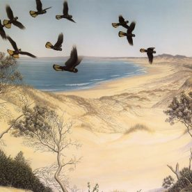 Richard Weatherly Edge of the Dunes Giclee' Ed of 500 43 x 61cm Framed $550 p263 ORDERS TAKEN