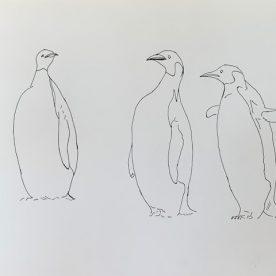 Richard Weatherly Emperor Penguins Pen & Ink 21 x 30cm Framed $450 SOLD