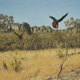 Richard Weatherly Kakadu Escarpment Giclee' on paper 43 x 60cm Framed Edition of 250 $600 ORDERS TAKEN