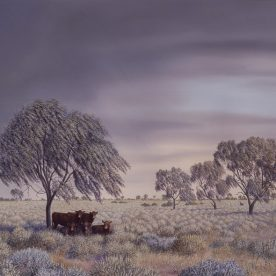 Richard Weatherly Weeping Myall Giclee' Edition of 150 47 x 63cm Framed $700 p112 ORDERS TAKEN