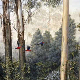 Richard Weatherly Mountain Ash Crimson Rosellas Print 41 x 60cm SOLD OUT On loan from artist p76